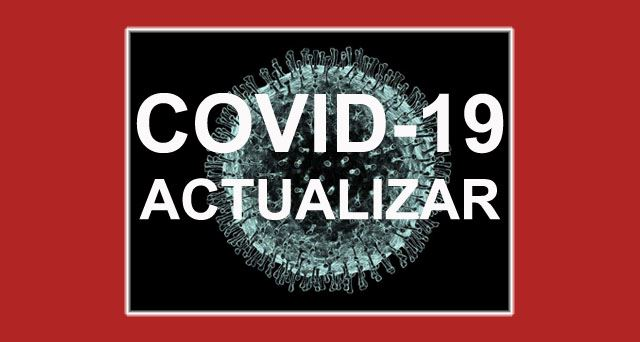 Website Covid-19SP